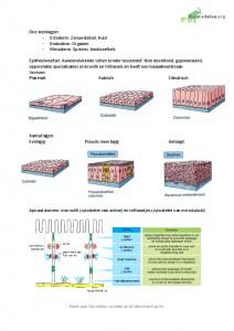 Samenvatting Celbiologie Deeltentamen 1 9780321709332