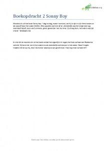 Nederlands leesdossier Havo boekopdracht 2