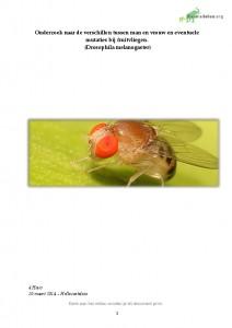 biologie practicum: genetisch onderzoek bij fruitvliegjes