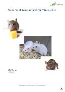 biologie practicum: onderzoek naar het gedrag van muizen