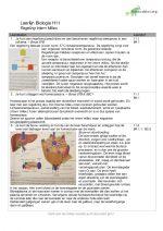 Samenvatting Biologie Leerdoelen | Regeling Intern Milieu
